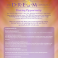The DREAM Experience Flyer